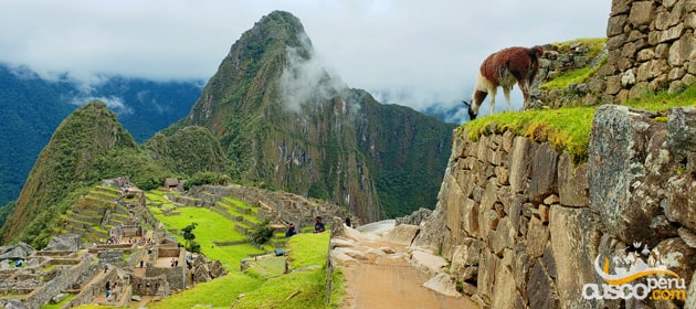 Difference between Machu Picchu mountain and Huayna Picchu mountain