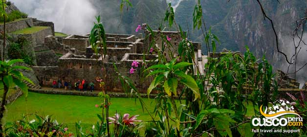 Ecology in Machu Picchu